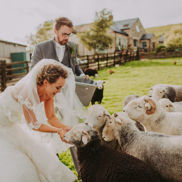 Natalie & Will   County Durham Wedding