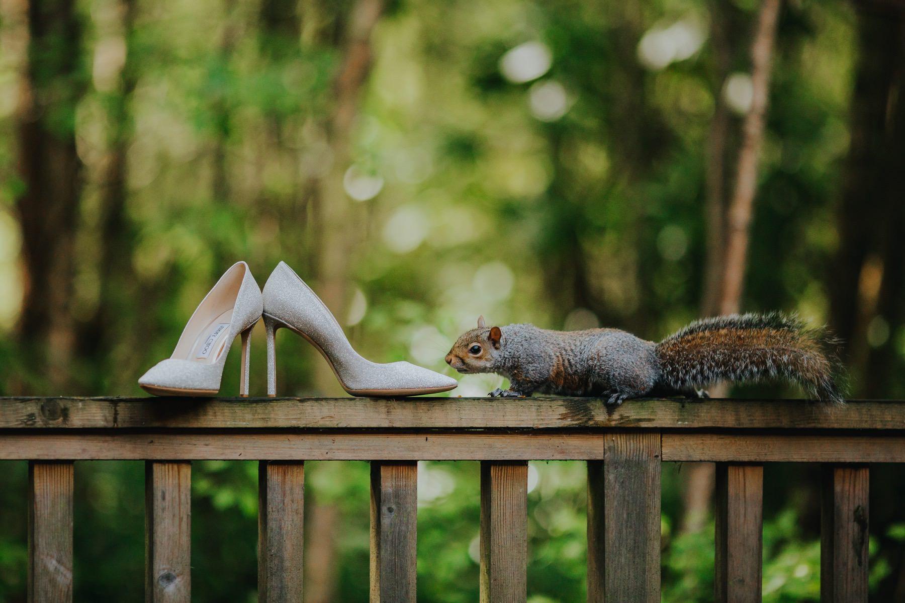 Best Wedding Photography | 2017 796